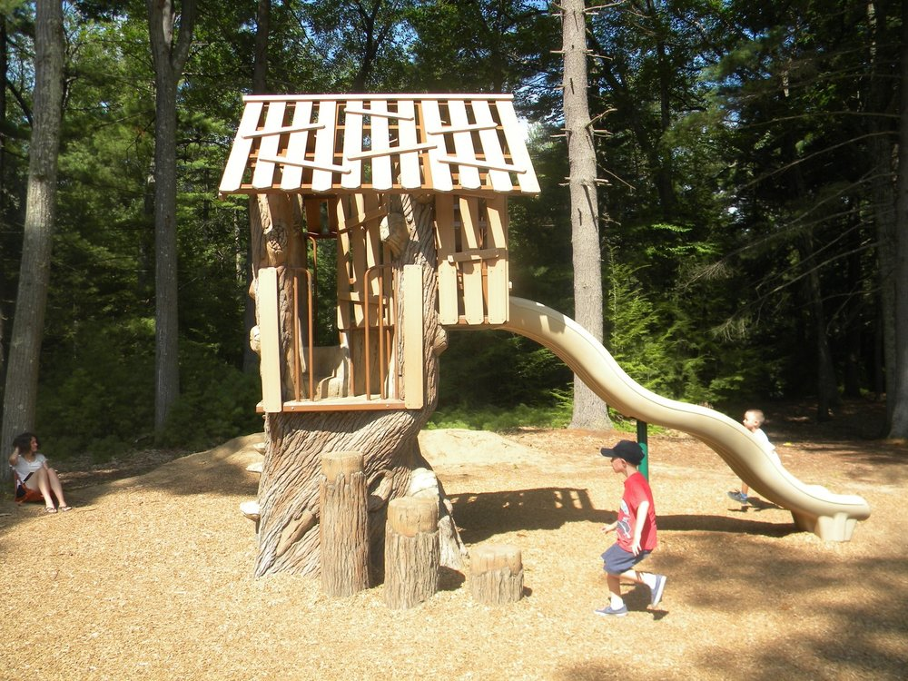 Tree house slide for young kids