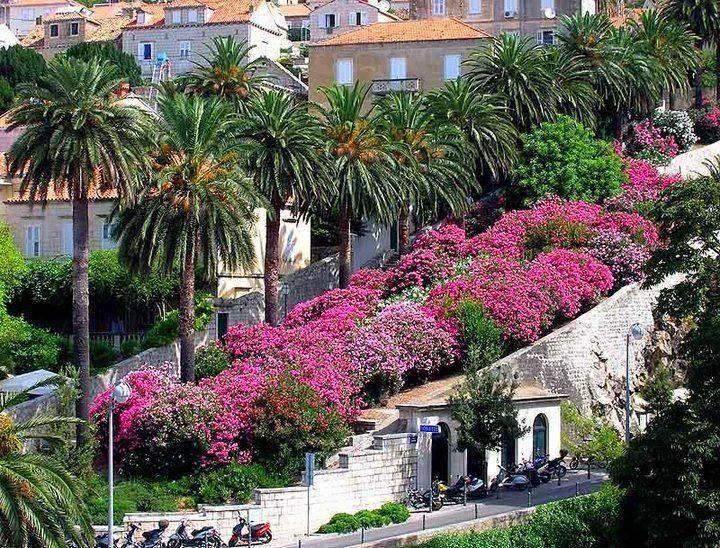 Uz Posat, Dubrovnik