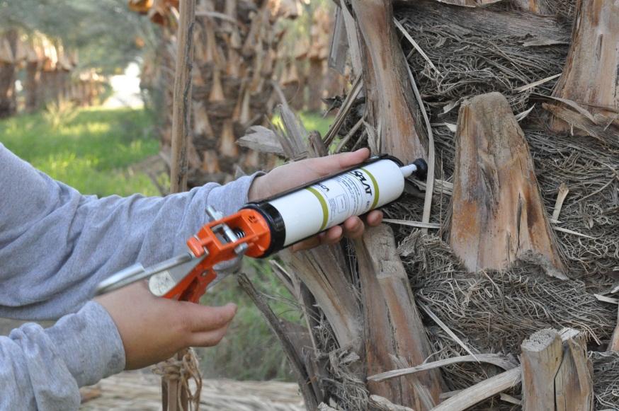 Insekticidne paste smanjuju populaciju nametnika.