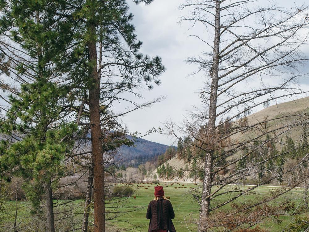 montana idaho camping hiking vsco pawlowski americayall america yall trip 20