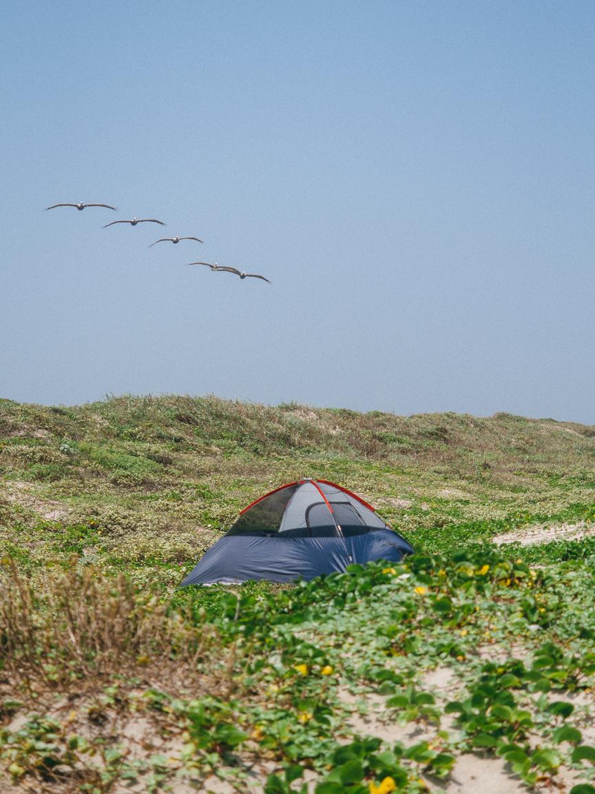 mustang island texas tx jeremy pawlowski america yall americayall vsco 30