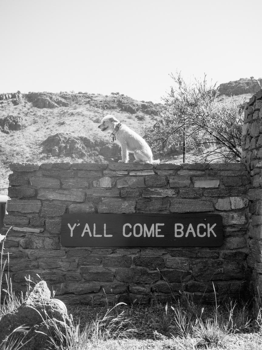 west texas marfa camping camp jeremy pawlowski america yall americayall vsco olympus 15