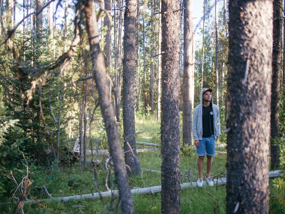 wyoming camp camping road trip america yall vsco olympus pawlowski trees