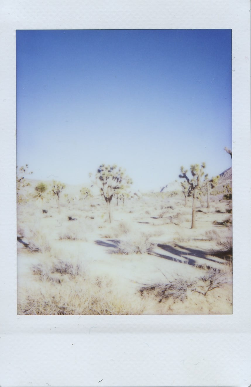 fuji instax salvation mountain california joshua tree trees
