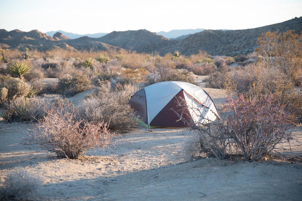 america yall jeremy pawlowski lauren simpson joshua tree national park california vsco camping tent