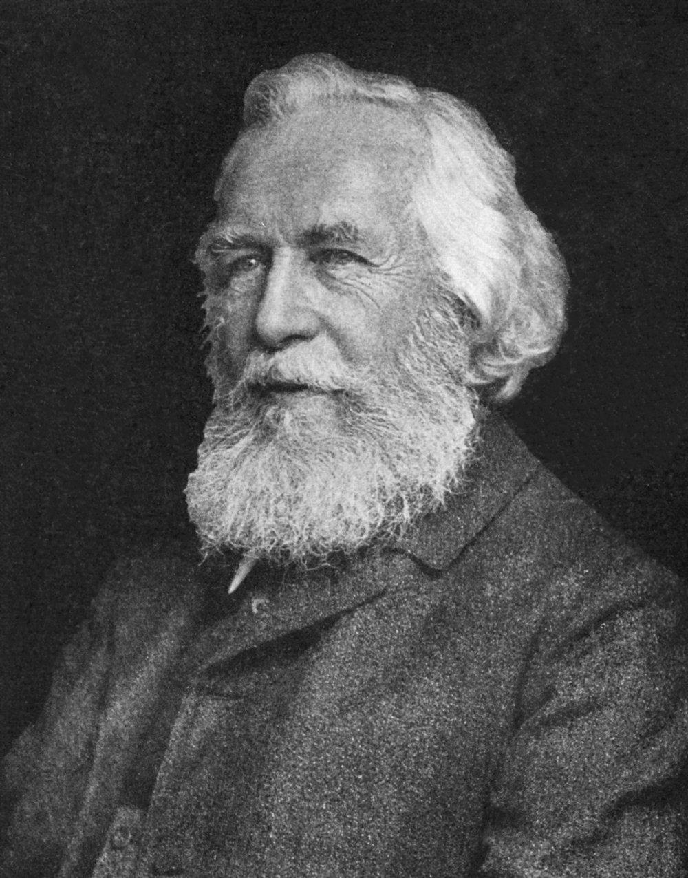 Ernst_Haeckel_5.jpg