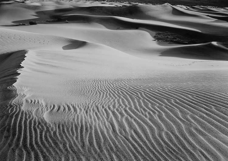 Death Valley Dunes #1