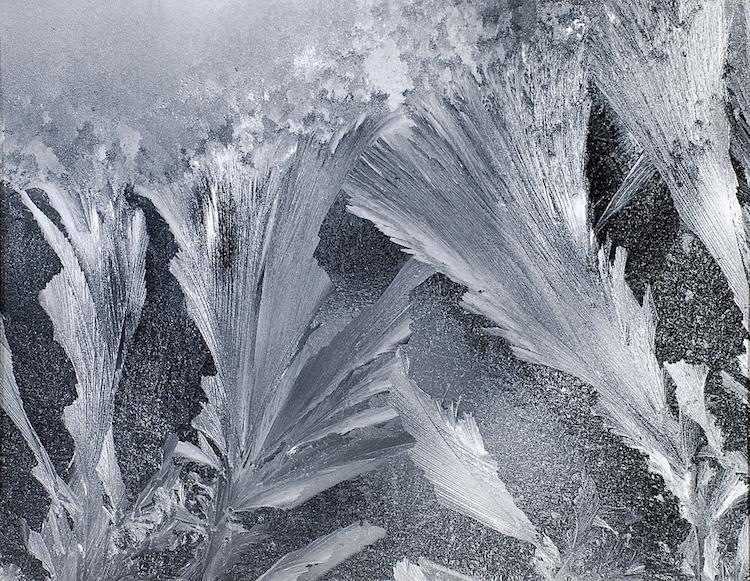 Window Frost, Vt.