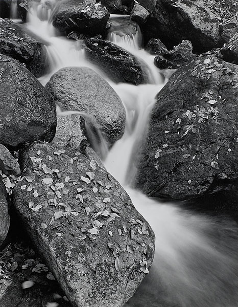 Cascade Brook #1, Franconia Notch, NH