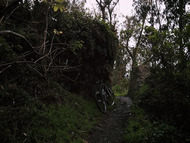 sutro-trails