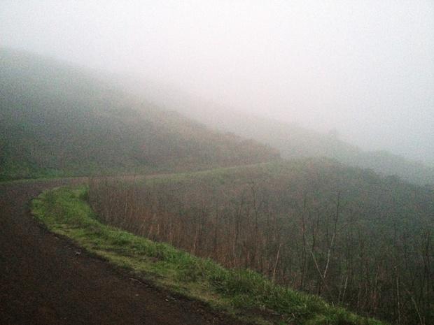 fog-patrol