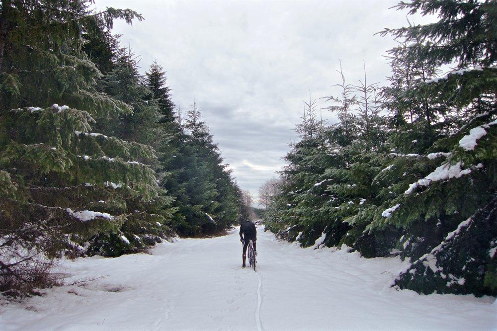 Sleet & Snow