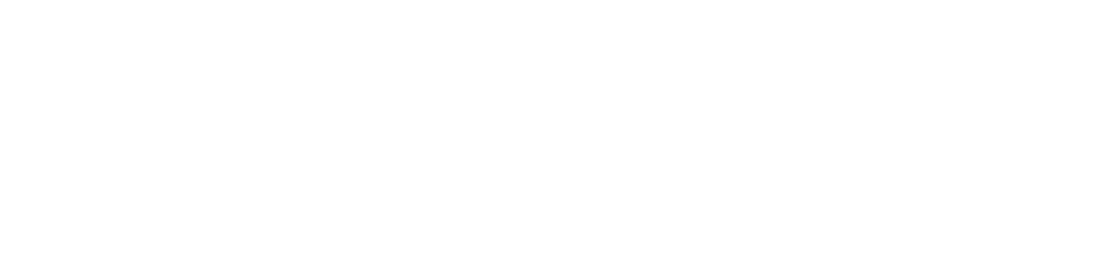 logo_msm.png