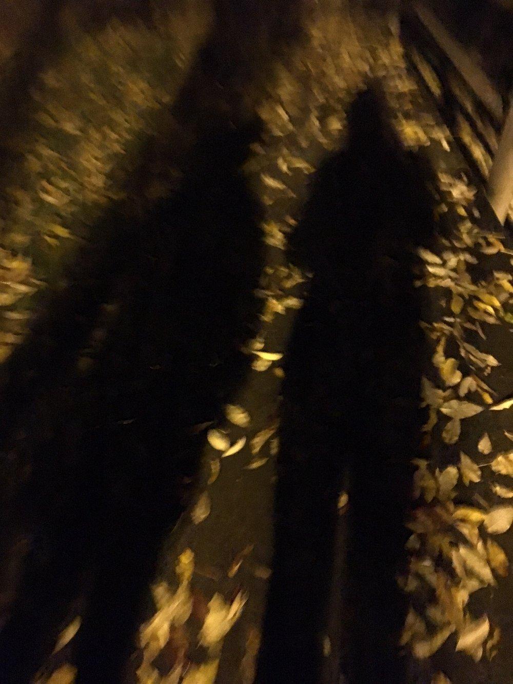 Fall/Shadows