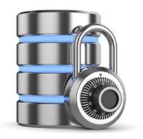 Maximum_Security.jpg