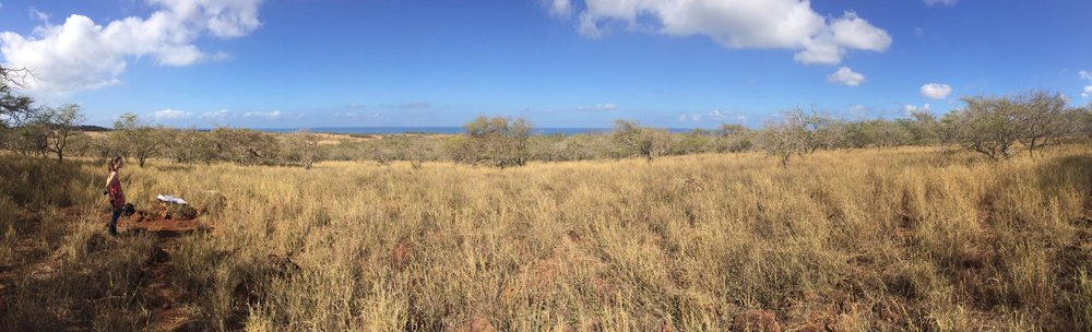 Molokai Panoramic_January 2016.JPG