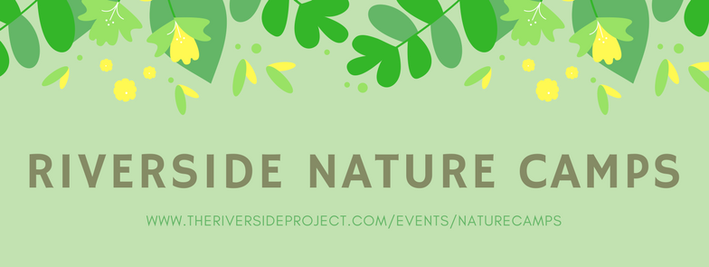 Riverside Nature Camp header.png