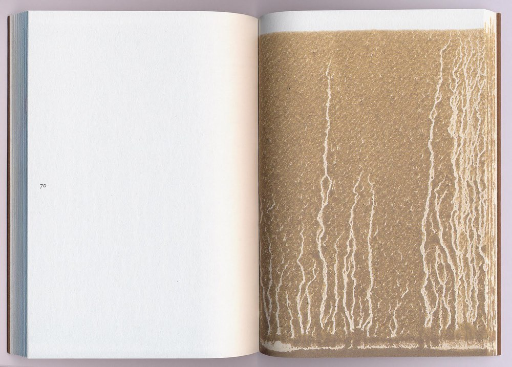 Richard Long, Gravity (Ivorypress, 2010)