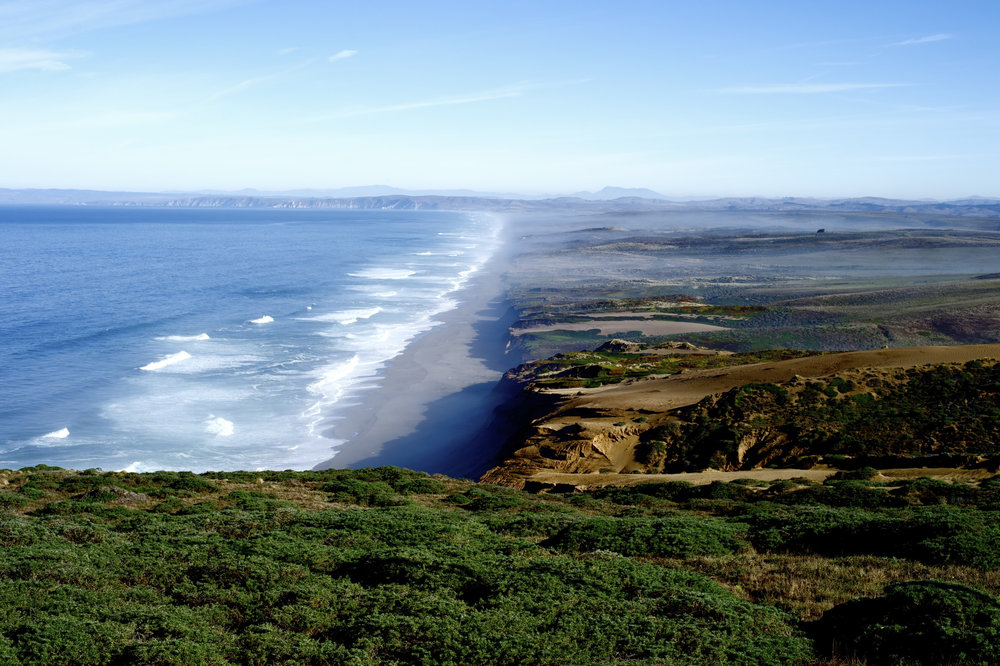 Point Reyes© Morgan Maassen.jpg