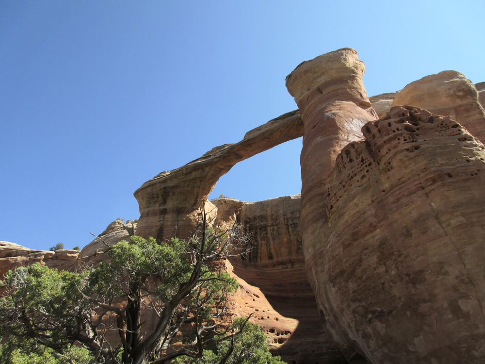 Rattlesnake Canyon has the largest collection of arches outside Arches National Park in Utah. This one soars nearly 100 ft from its base along a north facing ridge of the canyon