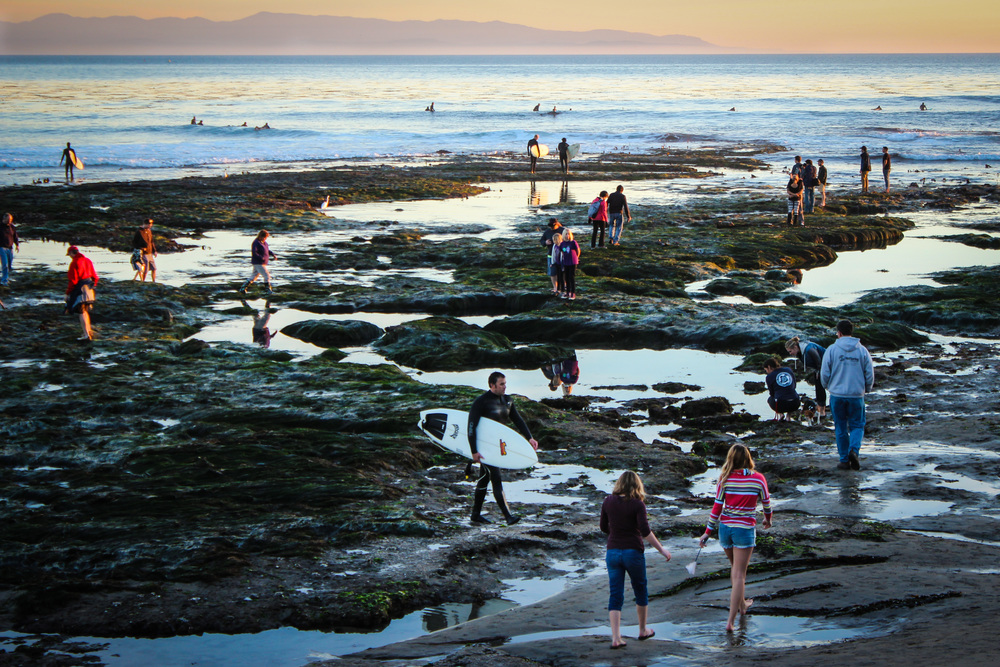 Beachgoers admire the sunset during extremely low tides at Pleasure Point in Santa Cruz, Calif.