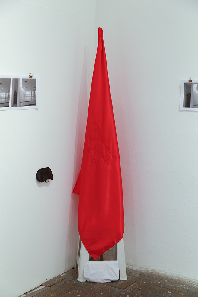 INTITUTION'S FLAG   Red Cetim with red embroidery   2014