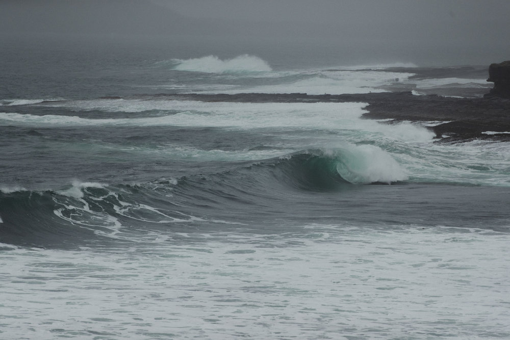 SurfBru-49.jpg