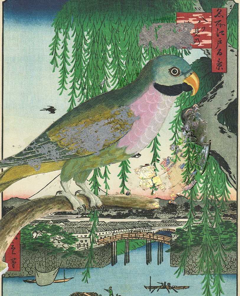 bird_collage_01 (1000px).jpg