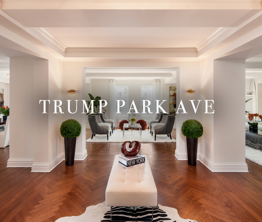 TrumpParkAVE2_coverimage_edit.jpg