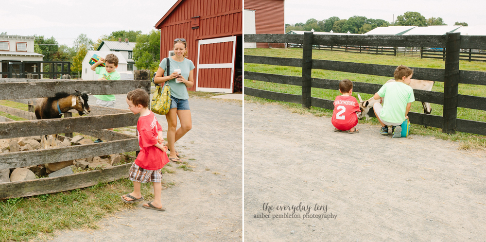 family-storytelling-photography.jpg
