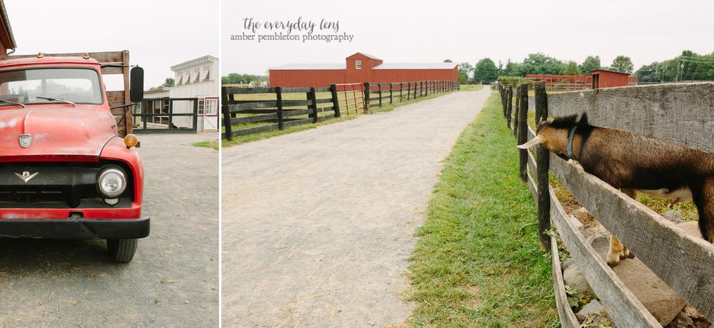 storytelling-photographer-on-the-farm.jpg