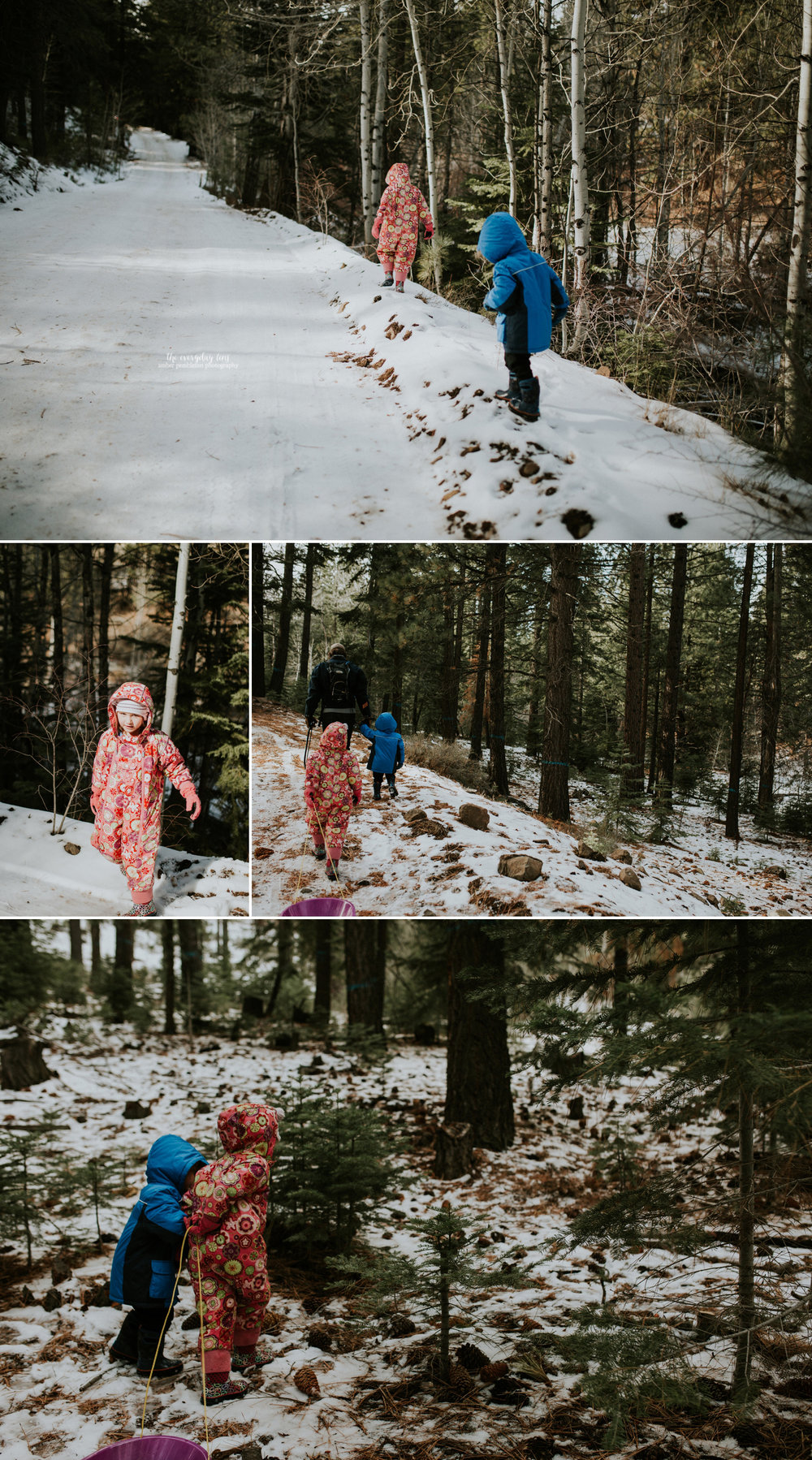 kids-with-sled-tahoe-forest.jpg