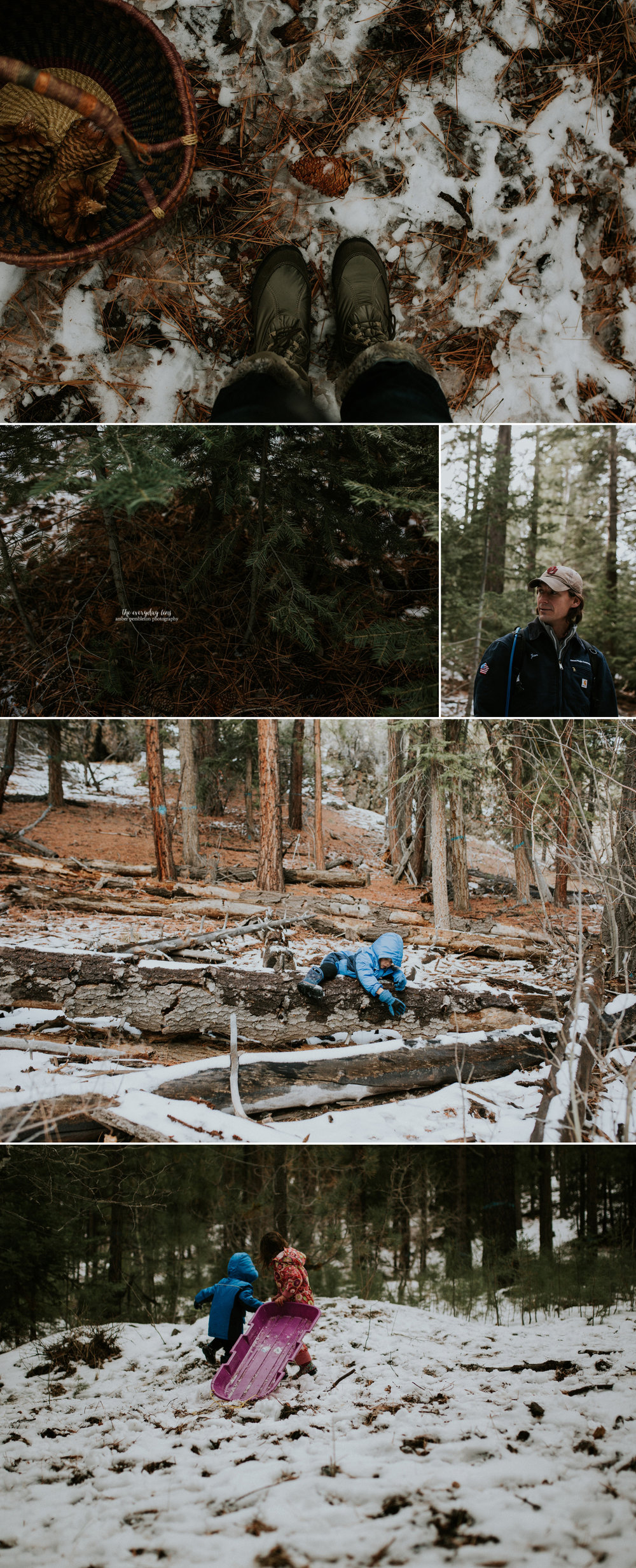 snowy-hike-tahoe-forest.jpg