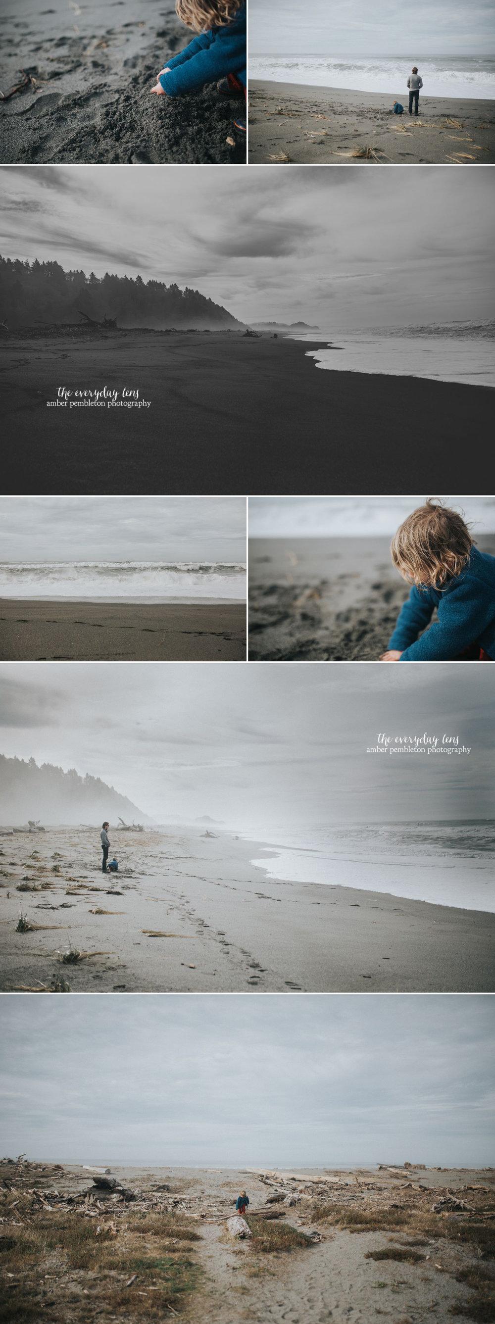 pacific-northwest-beach.jpg