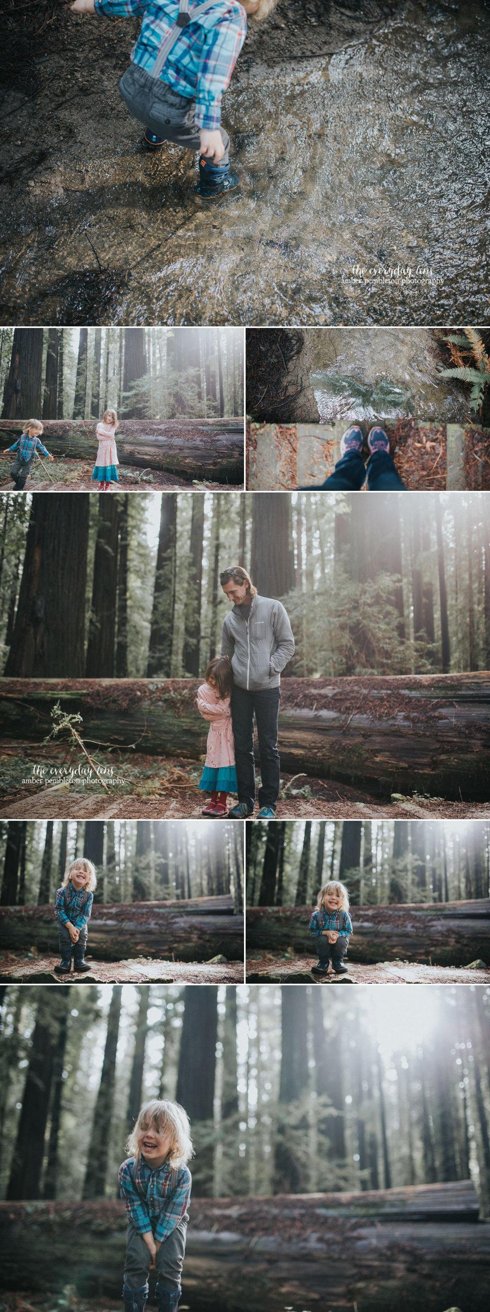 family-hiking-trip-redwoods.jpg