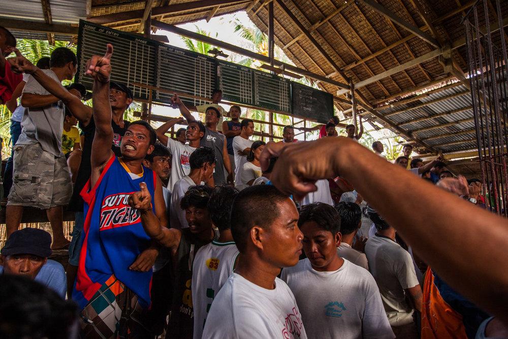 PHILIPPINE COCKFIGHT