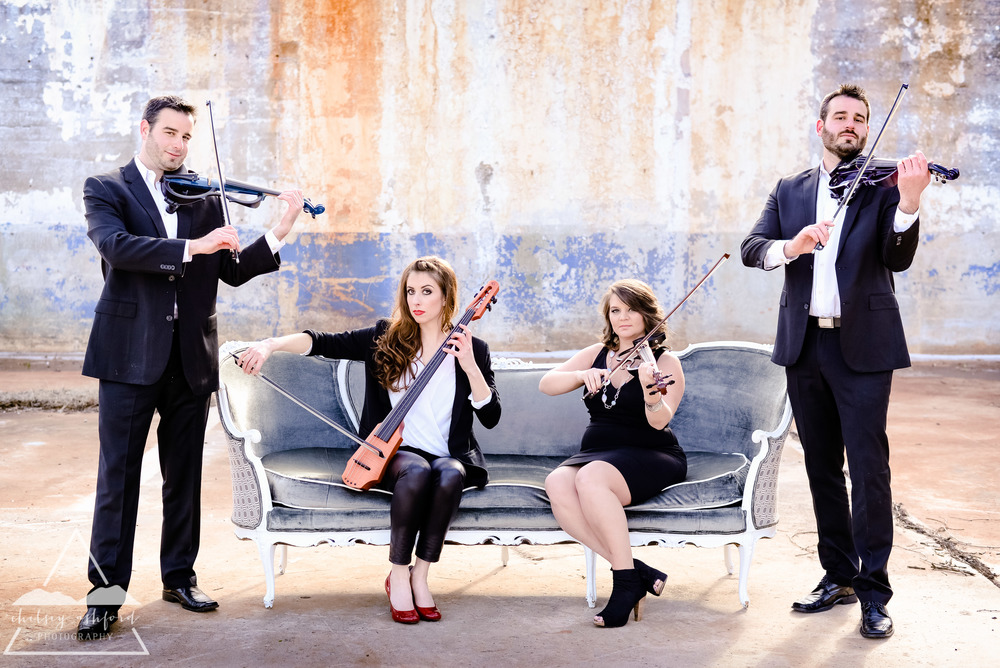 Synergy Violins// photo by Chelsey Ashford Photography