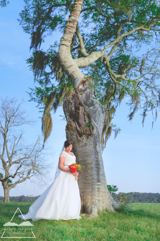 Sylvia_bridals_web-34.jpg