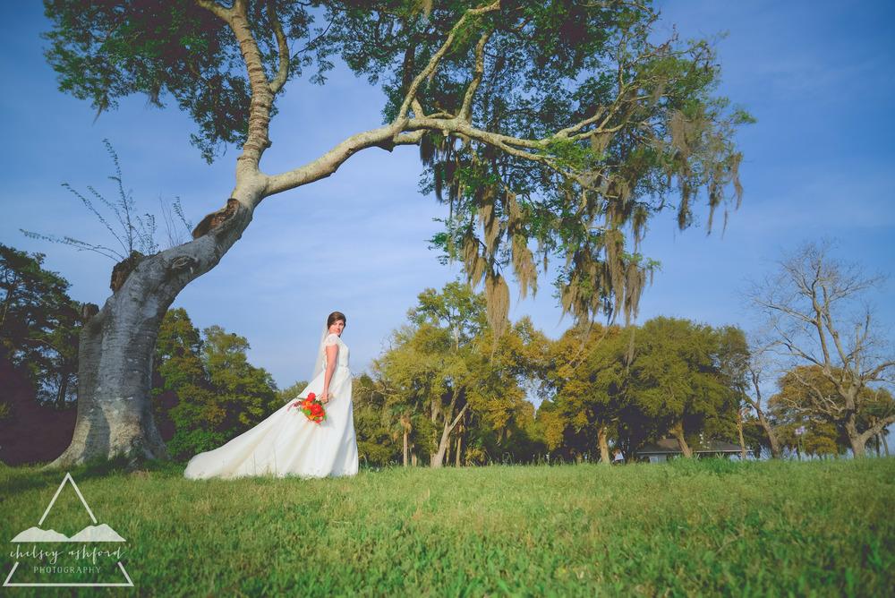 Sylvia_bridals_web-38.jpg