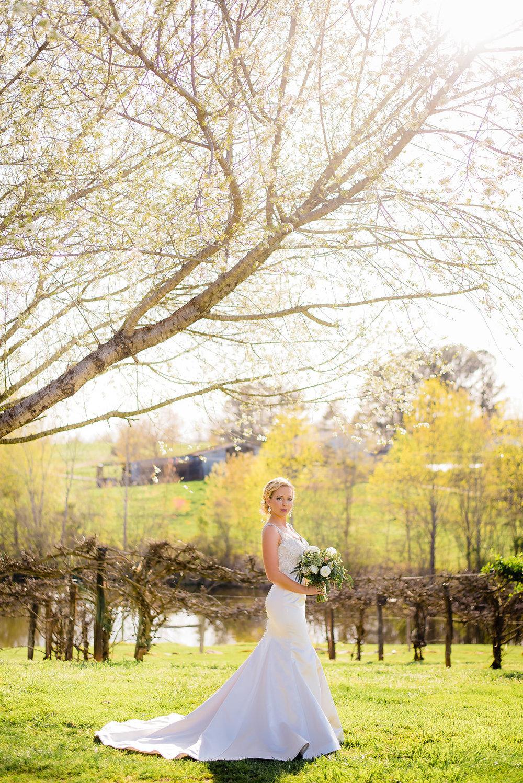 Hallie_bridals-6.jpg