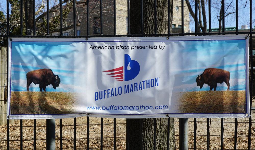 Buffalo Marathon 013.jpg