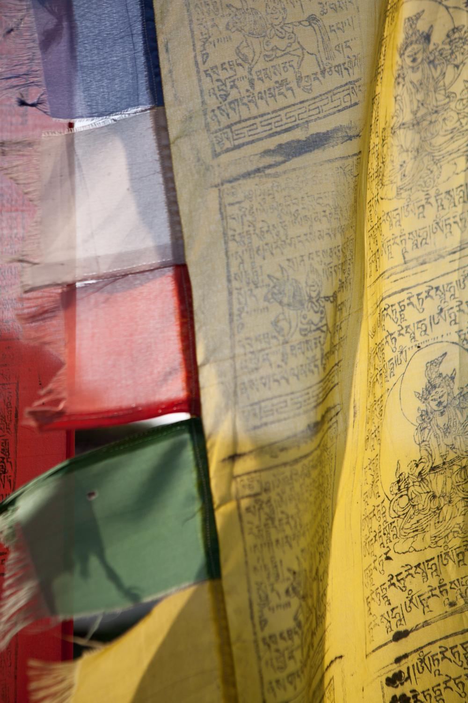 tibetanindia-5.jpg