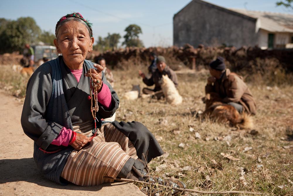 tibetanindia-8.jpg