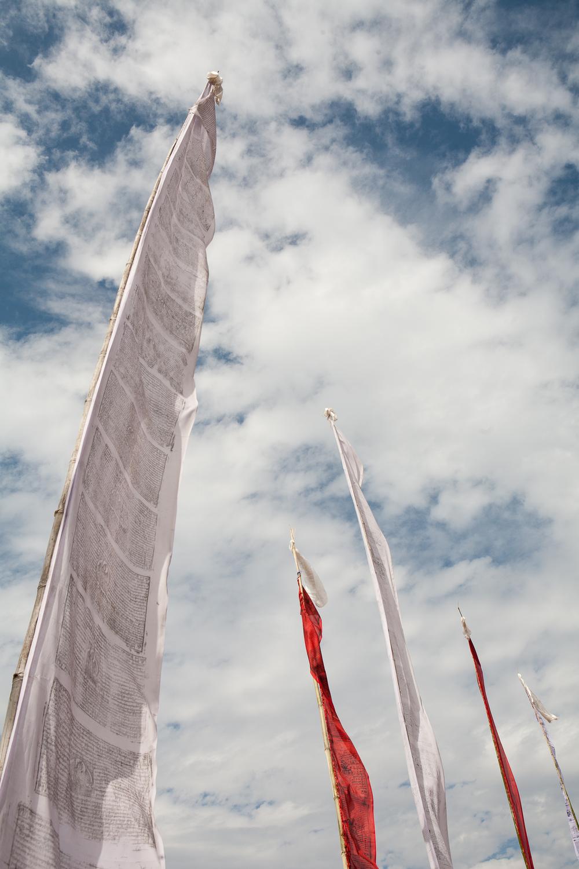 tibetanindia-17.jpg