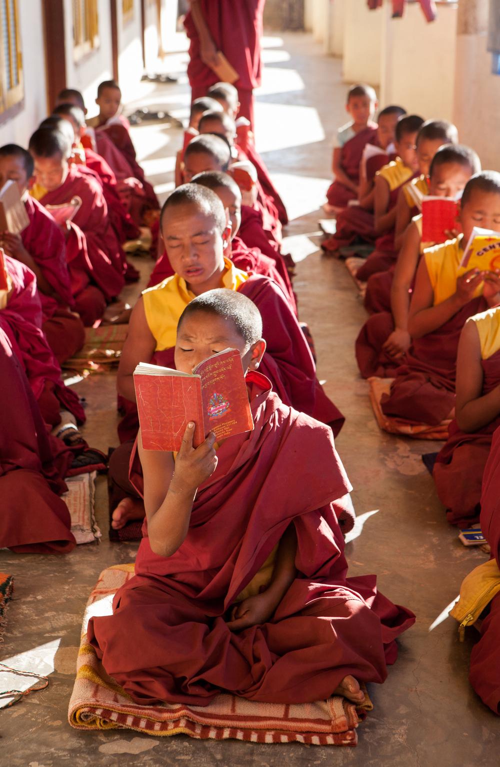 tibetanindia-27.jpg