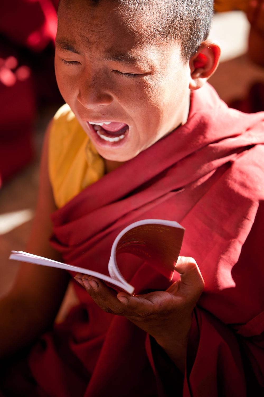 tibetanindia-30.jpg