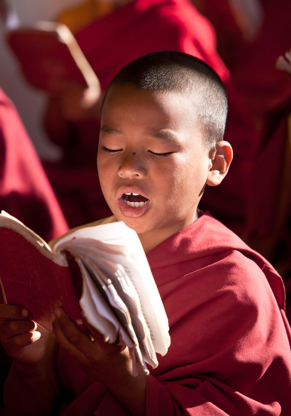 tibetanindia-31.jpg