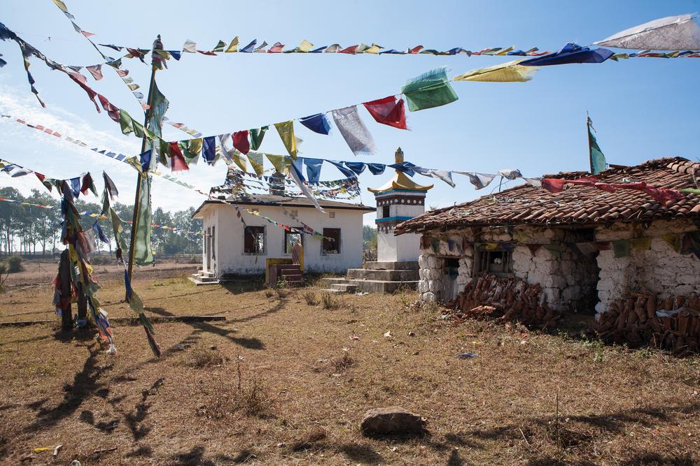 tibetanindia-46.jpg