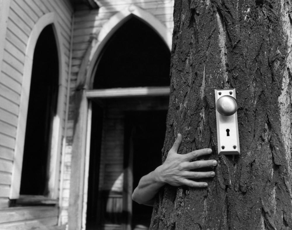 hand&doorknob on tree.jpg