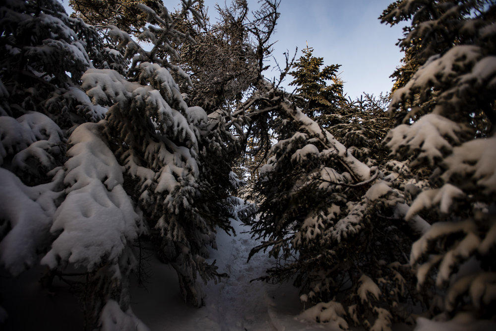 January 4, 2019, Crawford Notch, NH: Photos from Crawford Notch, New Hampshire on, January 4, 2019. (Photo by Matthew Thomas)